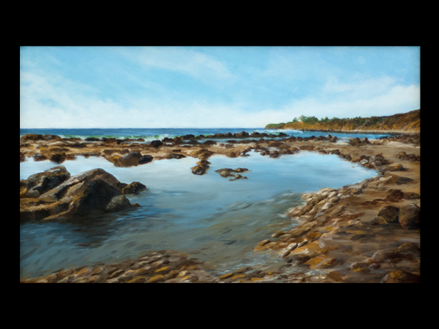 katie fagan graphics paintings-Bates Beach Tidepools