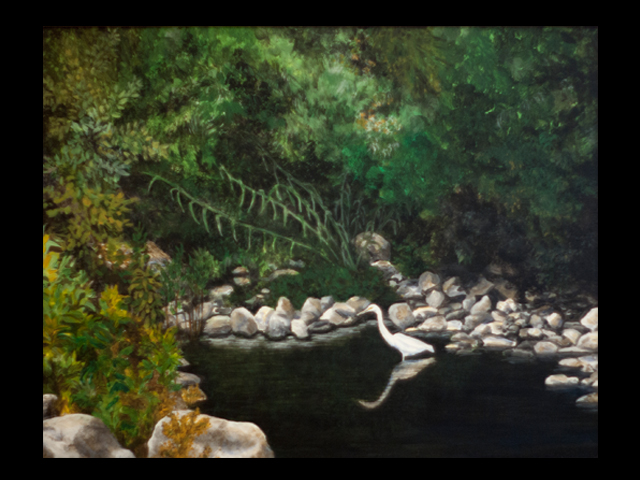 katie fagan graphics paintings-Egret at Casitas Springs