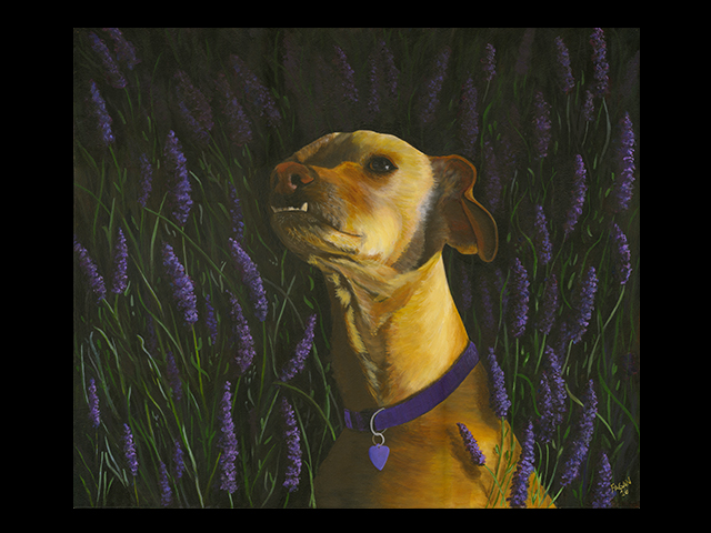 katie fagan graphics paintings-Lila in Lavender